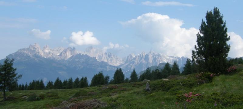 Du 13 au 19 juillet dans le Val di Fassa - Page 2 12_lat11