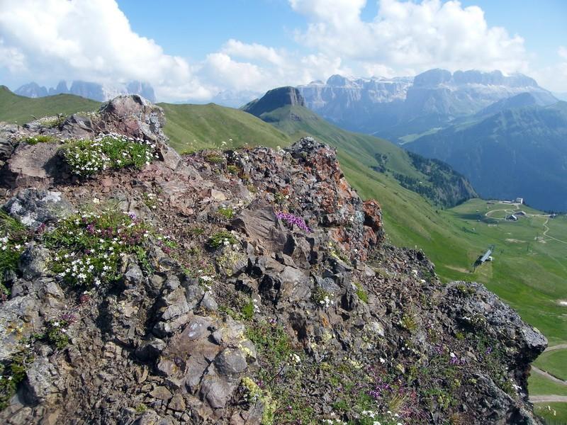 Du 13 au 19 juillet dans le Val di Fassa - Page 2 25_au_11