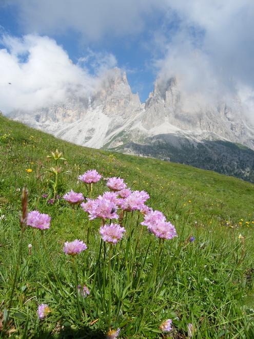 Du 20 au 22 juillet fin de séjour dans les Dolomites 28_43110