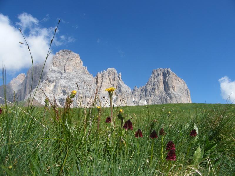 Du 20 au 22 juillet fin de séjour dans les Dolomites 28_sas10