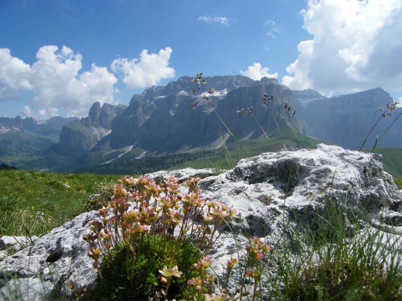 Du 20 au 22 juillet fin de séjour dans les Dolomites 36_43510