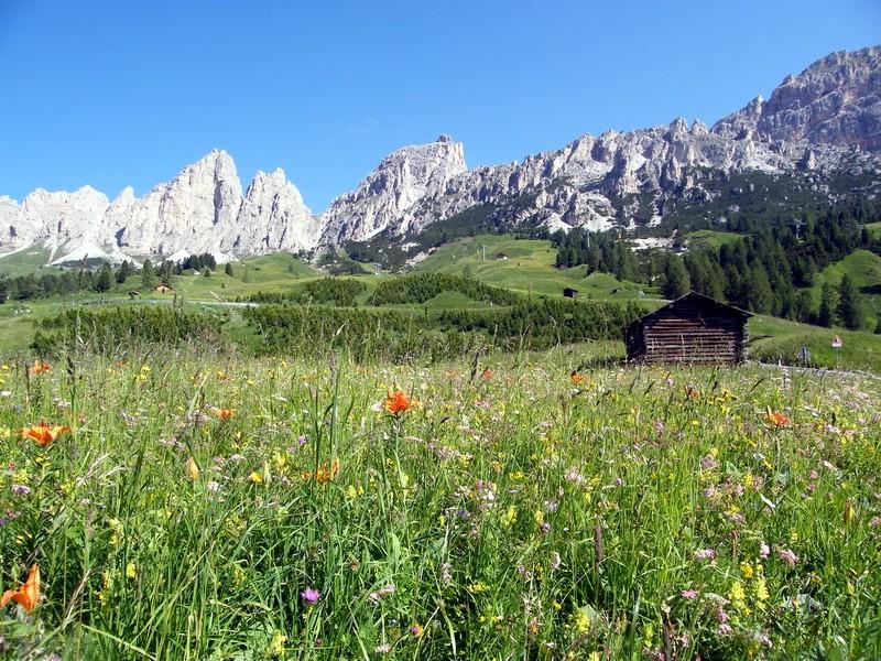 Du 20 au 22 juillet fin de séjour dans les Dolomites 9_sous10
