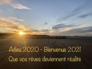Bonne année 2020 11a1ca10
