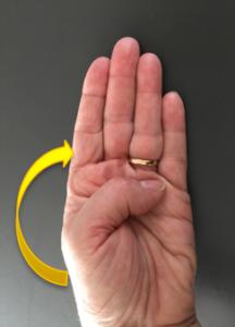 Le cerveau dans la main : comment gérer ses émotions 5c74c310