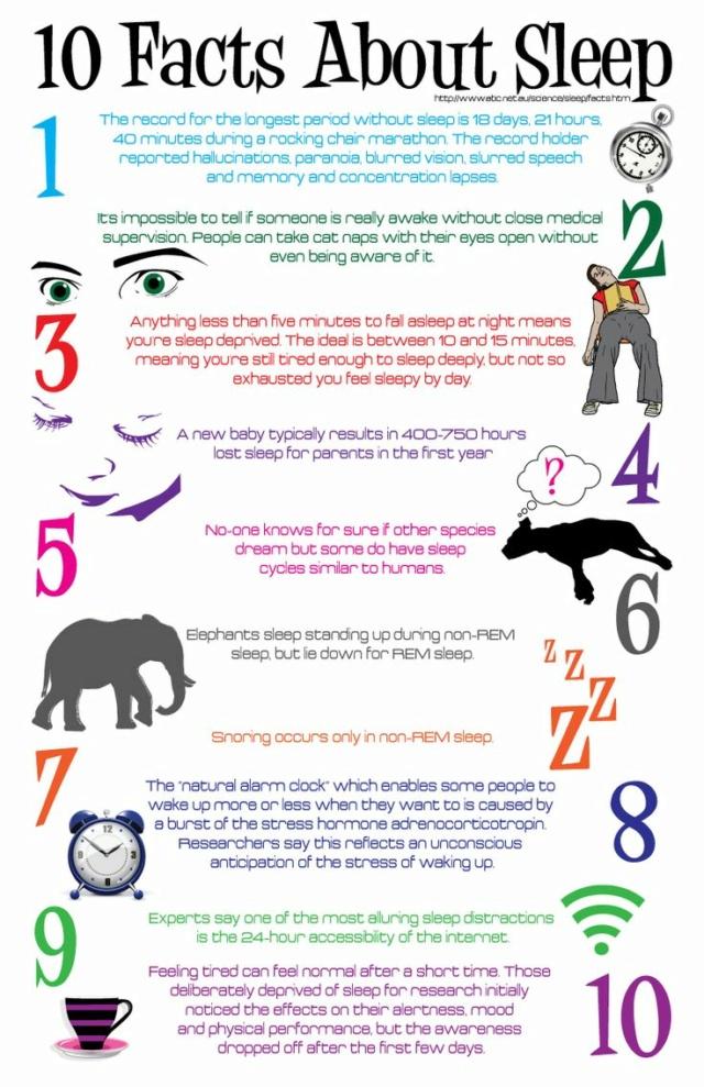why is sleep  important ? Sleep10