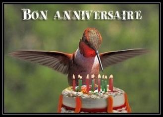 Anniversaire brigitte Bon-an10