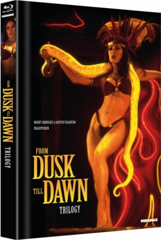 DVD/BD Veröffentlichungen 2019 - Seite 3 Fdtd-t12