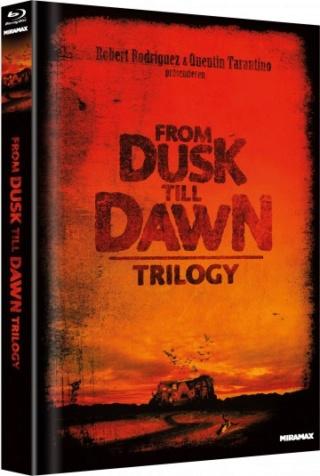 DVD/BD Veröffentlichungen 2019 - Seite 3 Fdtd-t13