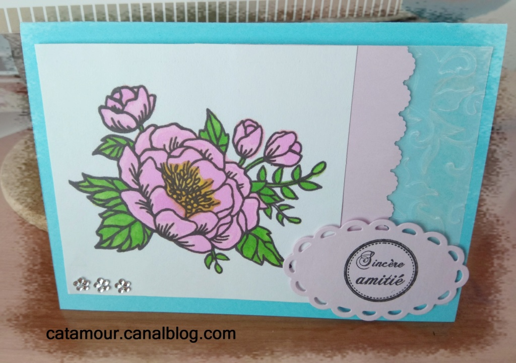 Galerie de Catamour - Page 10 Img_2118
