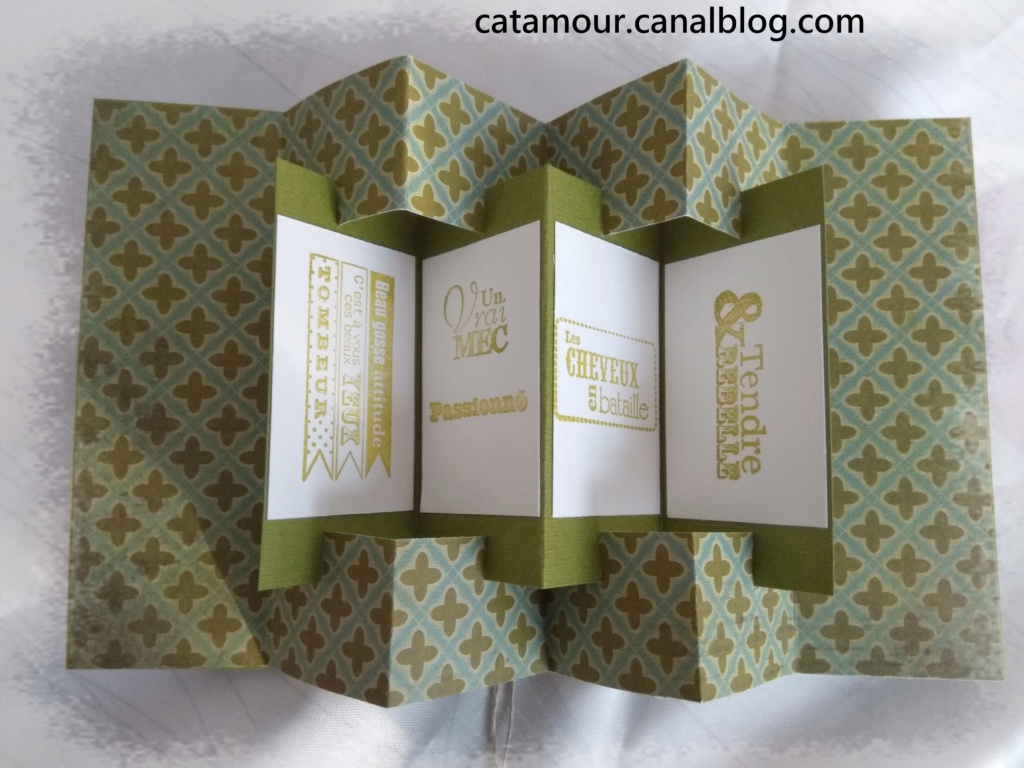 Galerie de Catamour - Page 10 Img_2122