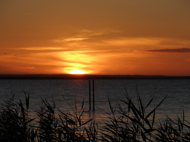 Lakeside Haven. 01711