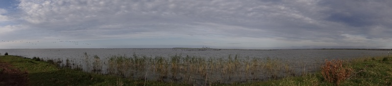 Lakeside Haven. 05711