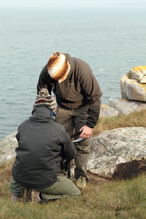 Suivi 2011 du Crave à bec rouge (Pyrrhocorax pyrrhocorax) en Bretagne Escala10