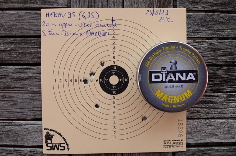 Diana 350, Webley Patriot, Hatsan 95... Dsc_9312