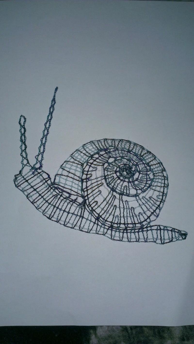 escargot 2013-011