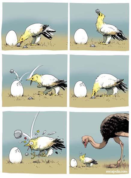 Humor gráfico - Página 15 Avestr10