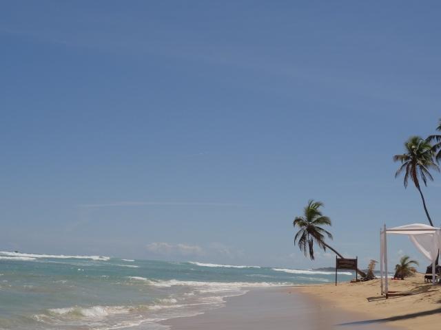 De retour.... Punta_10