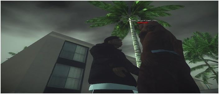216 Black Criminals - Screenshots & Vidéos II - Page 4 Sa-mp144