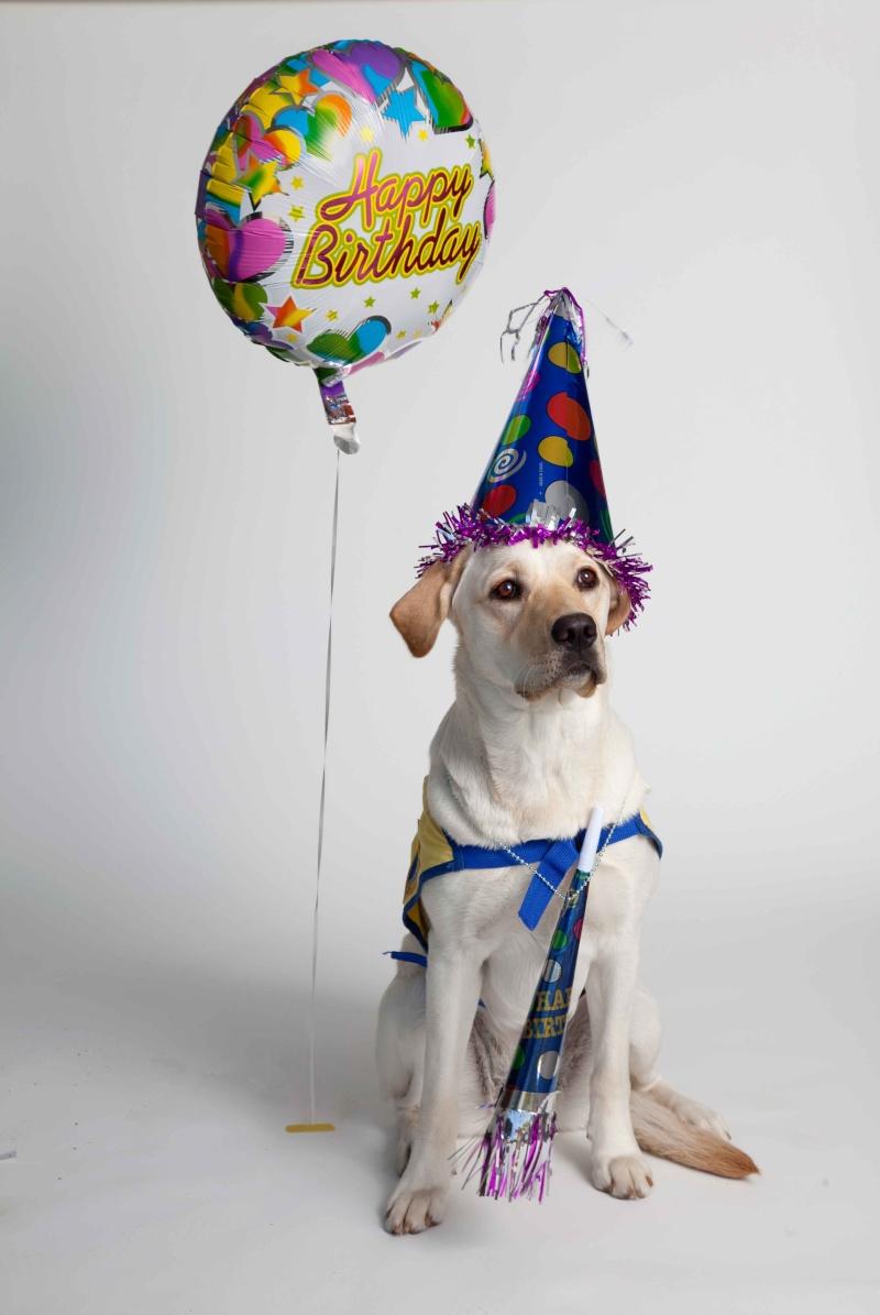 Happy Birthday Melody Birthd11