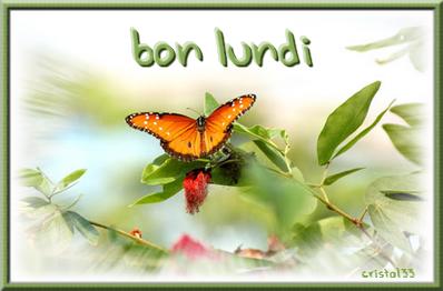 Bonjour...bonne journée...bonsoir...bonne nuit.... - Page 13 14526014