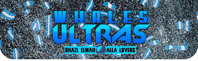 Ultras Whales - التراس ويــلز