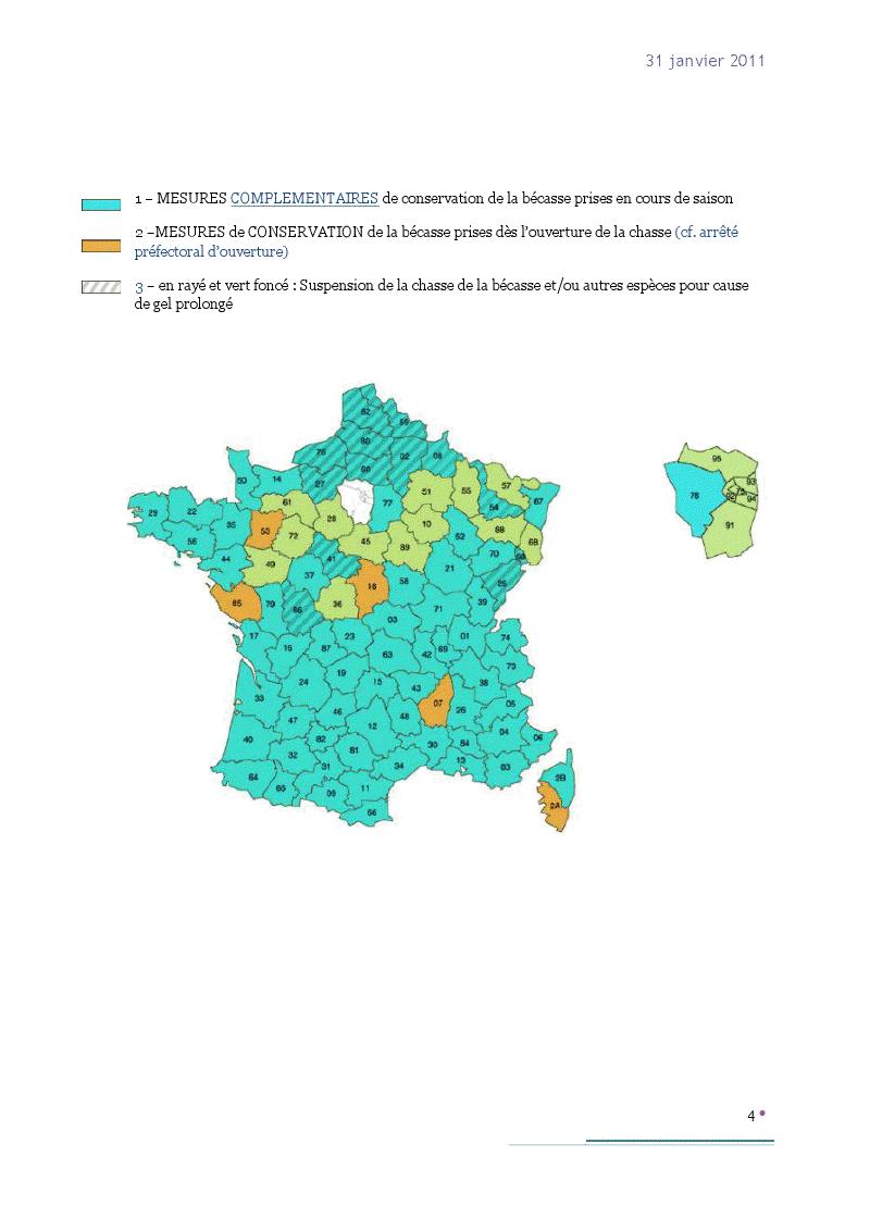 Actualité Bécasses. - Page 7 Viewer16