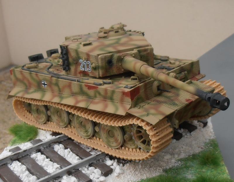 Tiger I ausf E  ( le diorama ) - Page 3 P4191716