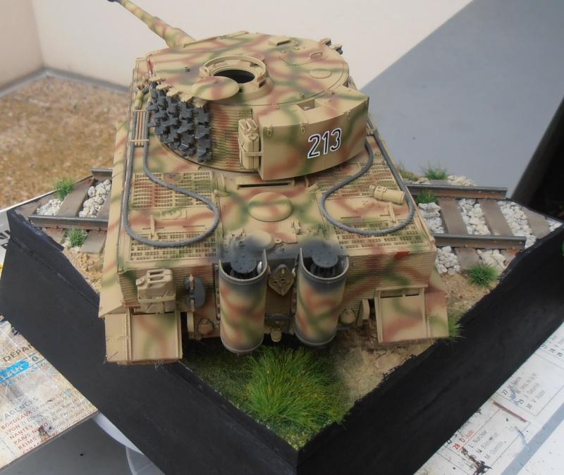Tiger I ausf E  ( le diorama ) - Page 3 P4201711