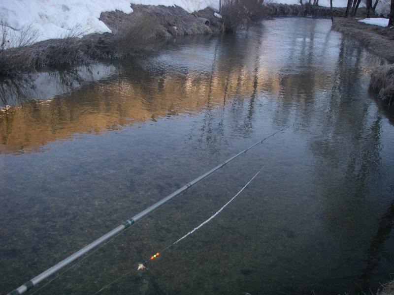 La pêche au toc aux vers congelés on a le droit ? Imgp6312