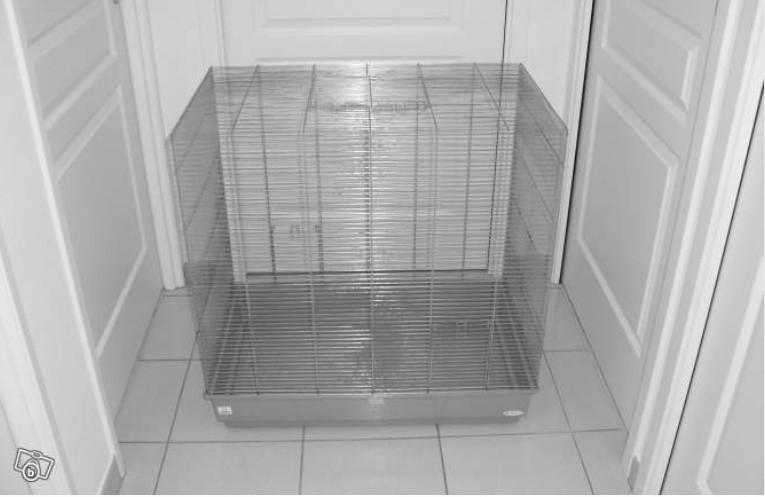 avis sur achat cage! Cage1010