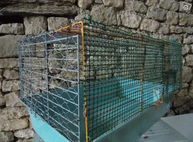 cage 85/44 Sans_t10