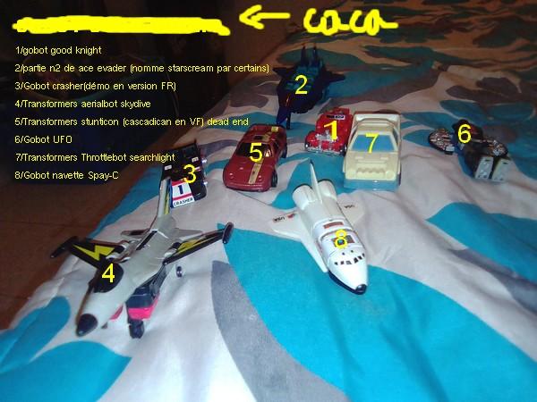 Identification TFs/Gobots Spiy10