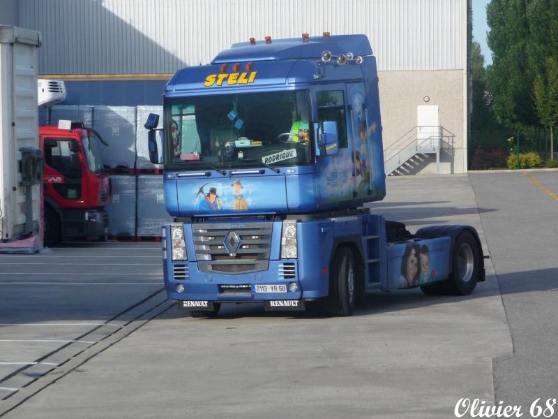Steli (Soultz 68) Steli_10