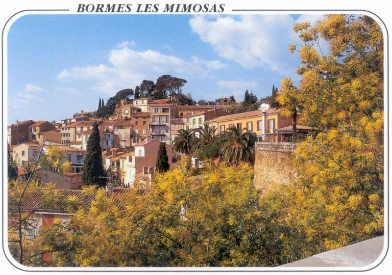 Bon Dimanche Bormes10