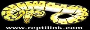 reptil'sud-est 33648911