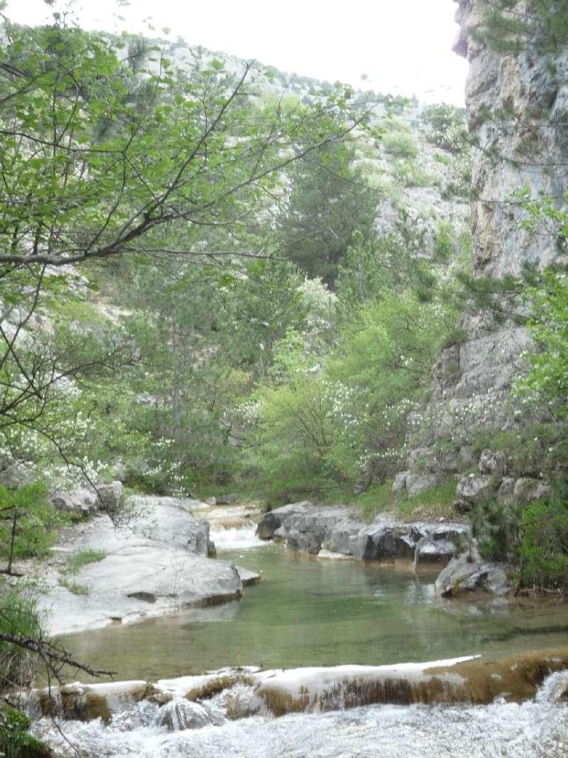 Re-sortie en Provence - Page 3 R310