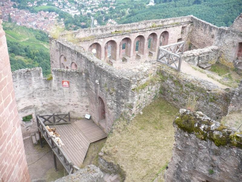Entre Vosges et Alsace.....pérégrinations estivales... P1120911