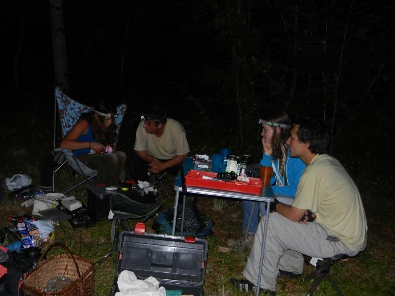 Radio tracking de Murin à oreilles échancrées lancé cette nuit Dscn3014