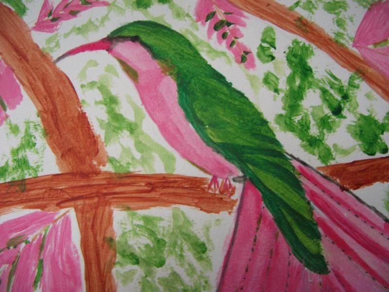 Premier dessin, mon colibri ! Dscf5111