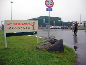 Monsanto - 828 scientifiques renommés demandent la fin des expérimentations d'OGM de Monsanto !  3244d-10