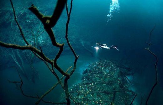 Incroyable : ils ont découvert une rivière dans l'eau !  Rivi_r11