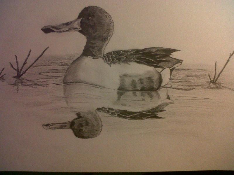Mes dessins Img00225