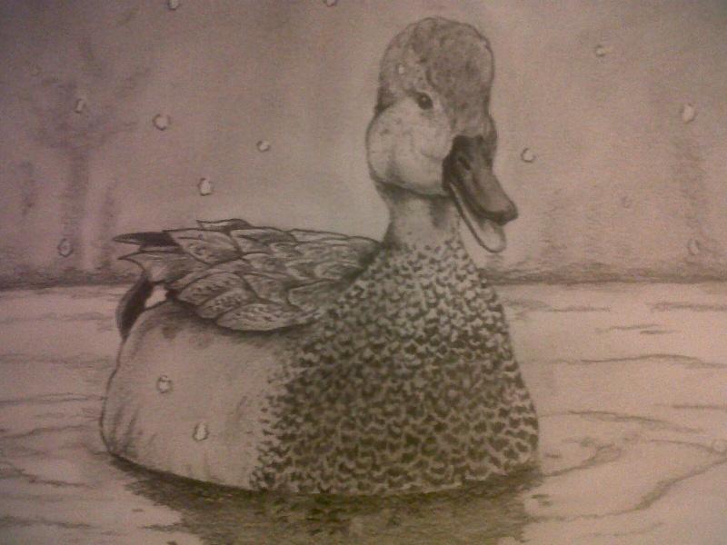 Mes dessins Img00228