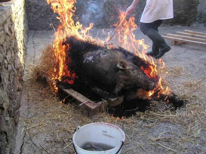 tuer le cochon - Page 2 P1010013