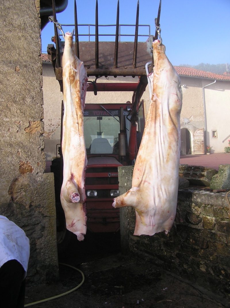 tuer le cochon - Page 2 P1010014