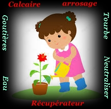 Comment peut-on neutraliser le calcaire dans l'eau d'arrosage des plantes ? Arrosa11