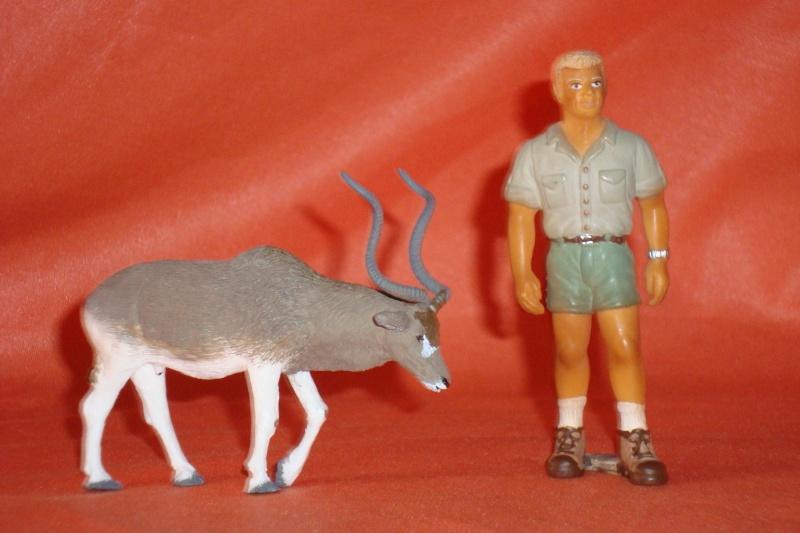 Addax antelope by Joan  Dsc03310