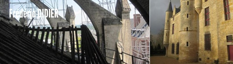 Architecte en chef des monuments historiques  Fradar10