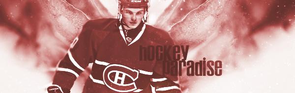 Hockey-Paradise V