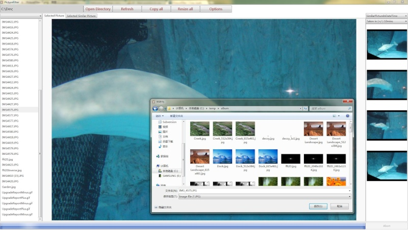 PictureFilter 1.1.2 - Ένα μικρό λογισμικό για την αναζήτηση και προβολή εικόνων Pictur10